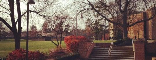 Calvin College is one of Posti che sono piaciuti a Túlio.