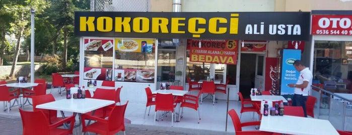 Kokoreçci Ali Usta is one of Posti che sono piaciuti a Alp Gökçe.