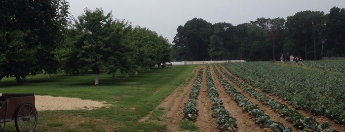 Lee Turkey Farm is one of Lieux sauvegardés par James.