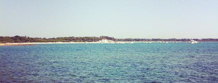 Platja d'es Dolç is one of Mallorca relax.