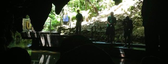 Waitomo Glowworm Caves is one of Before I Die.
