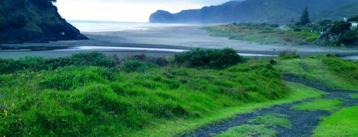 Piha Beach is one of Новая Зеландия.