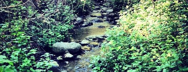 Monrovia Canyon Park is one of Hiking - LA - South Bay - OC - etc..
