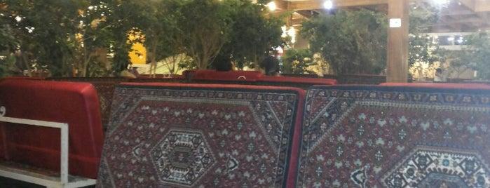 Abshar Restaurant | باغچه خانوادگی آبشار is one of Summer 2016: CDG | IKA | FCO | ATH | MAD.