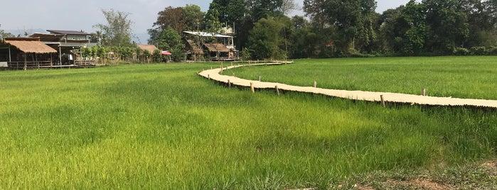 สะพานทุ่งนามุ้ย is one of สระบุรี, นครนายก, ปราจีนบุรี, สระแก้ว.