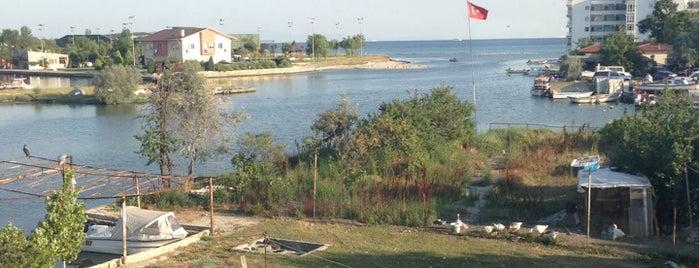 Arzu Yalı (sweet Home) is one of Posti salvati di Neslihan.