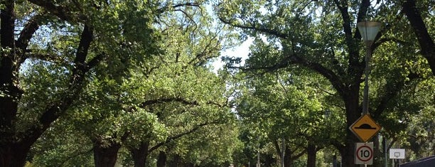 Yarra Park is one of สถานที่ที่ Ralph ถูกใจ.