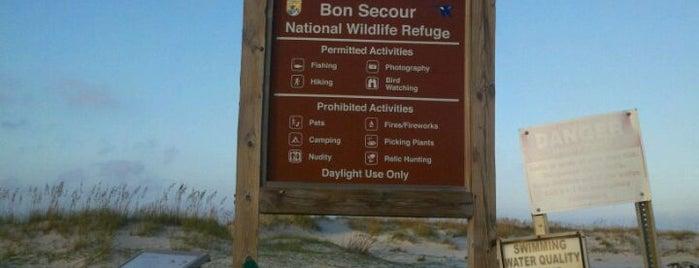No Name Rd. Beach Access is one of สถานที่ที่ Mark ถูกใจ.