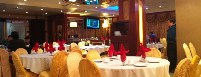 Golden Unicorn Restaurant 麒麟金閣 is one of Favorite NYC restaurants.