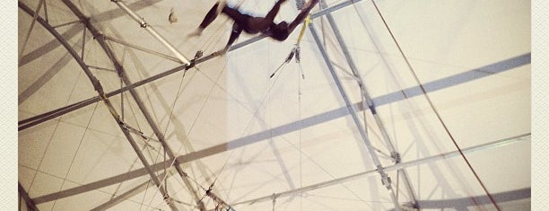 Trapeze School of New York is one of Do Something Adventurous.