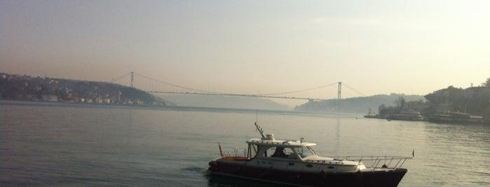 Sevgi Bahçesi is one of ● cafe istanbul ®.