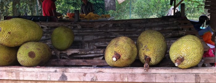 Nangka Madu Bentong is one of @Bentong, Pahang.