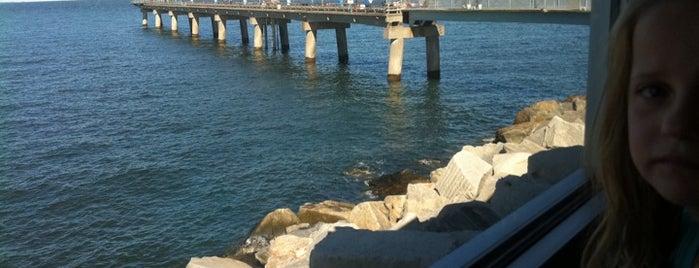 Chesapeake Bay Bridge-Tunnel is one of Posti che sono piaciuti a Latonia.