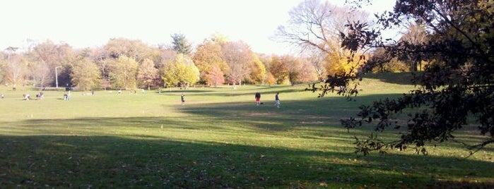Prospect Park is one of I love Brooklyn.