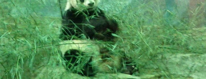 Smithsonian National Zoological Park is one of Interesting....