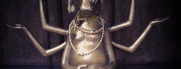 Yoga Practika is one of Lieux qui ont plu à Darya.