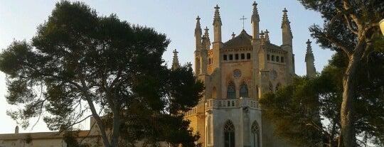 Hilton Sa Torre Mallorca Resort is one of Posti che sono piaciuti a Tim.