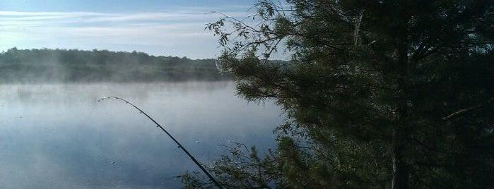 Рыбалка на Десне is one of Tempat yang Disukai Олег.
