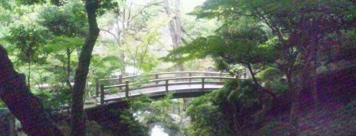 西之丸庭園 (紅葉渓庭園) is one of 和歌山.