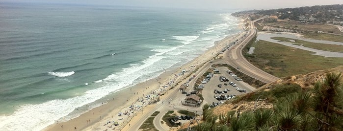 Torrey Pines State Beach is one of California Favorites.