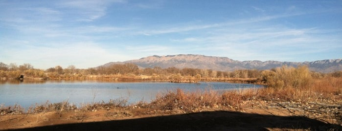 Rio Grande Nature Center State Park is one of New Mexico.