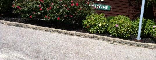 Mallard Creek Golf Club is one of Lorain County Golf Courses!.