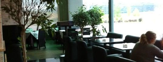 La Dehesa Café is one of HL Restaurants OK MAD.
