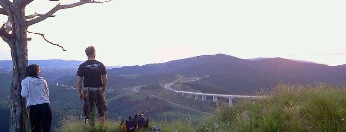 Črni Kal is one of Top Locations rund um Triest (ca. 50 km) SLO, ITA.