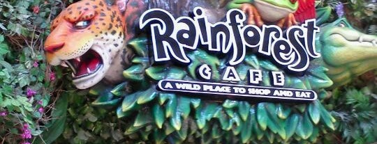 Rainforest Cafe is one of DFW -More Great Food.