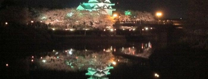墨俣一夜城 is one of ドライブ|お城スタンプラリー.