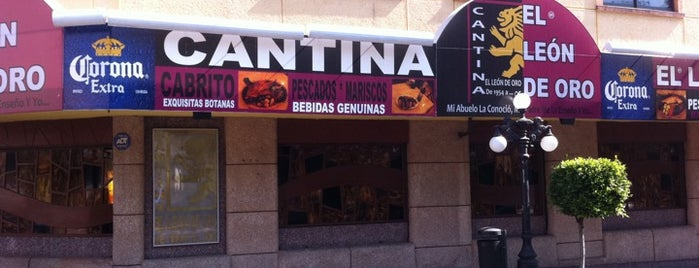 Cantina Leon De Oro is one of Cantinas.
