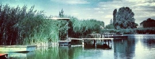 Szelidi-tó is one of Tavak, egyéb szabadvizi fürdőhelyek.