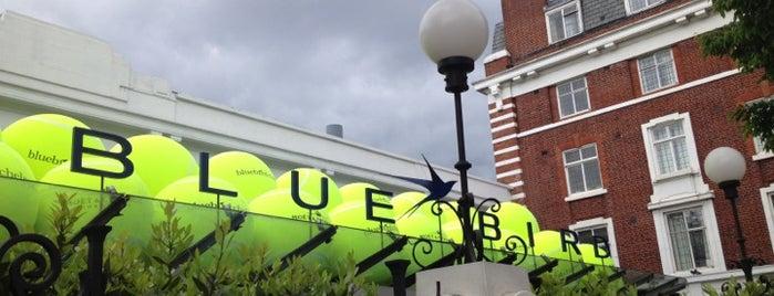 Bluebird Chelsea is one of London.