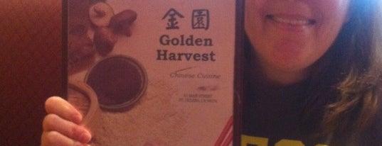 Golden Harvest is one of food.