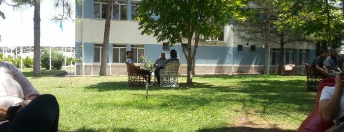 Korkud Efe (Kafeterya) is one of Türk Hava Kurumu Üniversitesi.