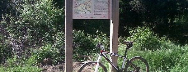 Parc de Collserola is one of Parks/Outdoors.