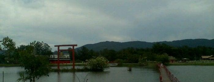 Parque Centenário da Imigração Japonesa is one of Vale uma Foto.