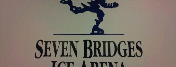 Seven Bridges Ice Arena is one of Chicago Rat Hockey.