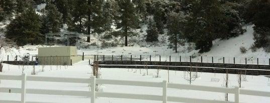 McGrath's Ski and Snowboard Rental is one of Big Bear Lake (Anti-Zombie Survival).