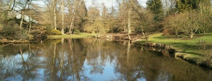 Savill Gardens is one of Orte, die Carl gefallen.