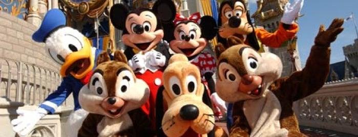 Walt Disney World Resort is one of USA.