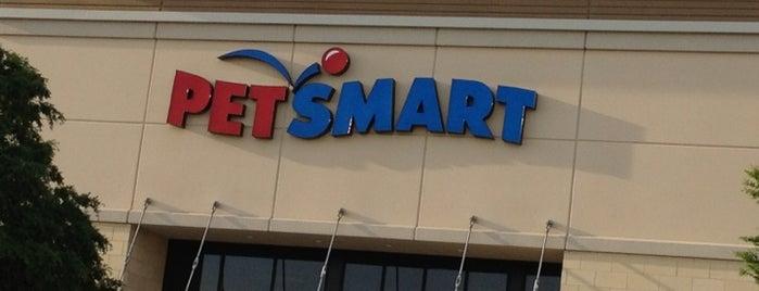 PetSmart is one of Lugares favoritos de Zach.
