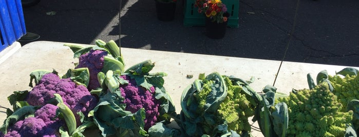 Scotch Plains Farmers Market is one of สถานที่ที่ Alan ถูกใจ.