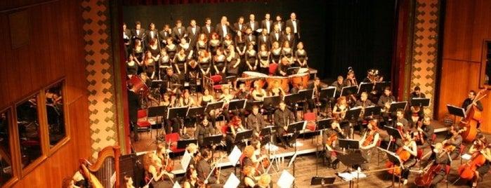 Mersin Devlet Opera ve Balesi is one of Mersin.