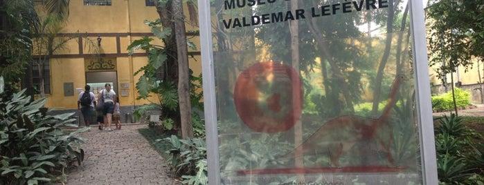 """Museu Geológico """"Valdemar Lefèvre"""" (MUGEO) is one of Museus em SP."""
