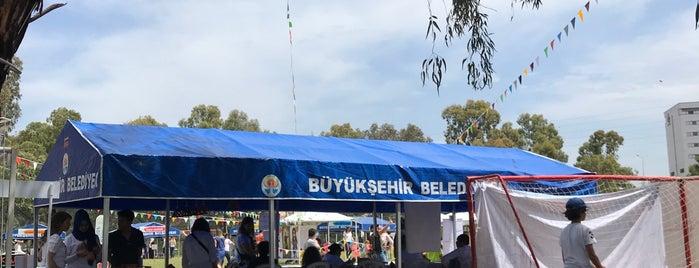 Adana Atlı Spor Kulubu is one of Adana.