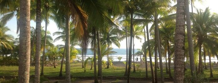 Coco Mar Residences & Beachfront Hotel is one of Tempat yang Disukai Junni.