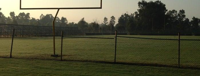 Club Deportivo Pumitas Football is one of Hugo A.'ın Beğendiği Mekanlar.