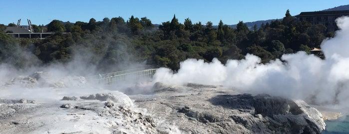 Pohutu Geyser is one of Nuova Zelanda.