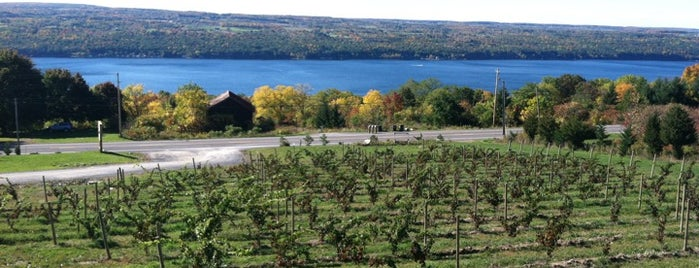 Damiani Wine Cellars is one of Finger Lakes.